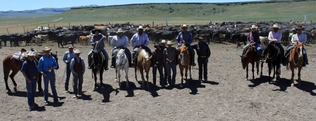 What would you do if all these cowboys showed up to eat? Cry? Drink? Both?