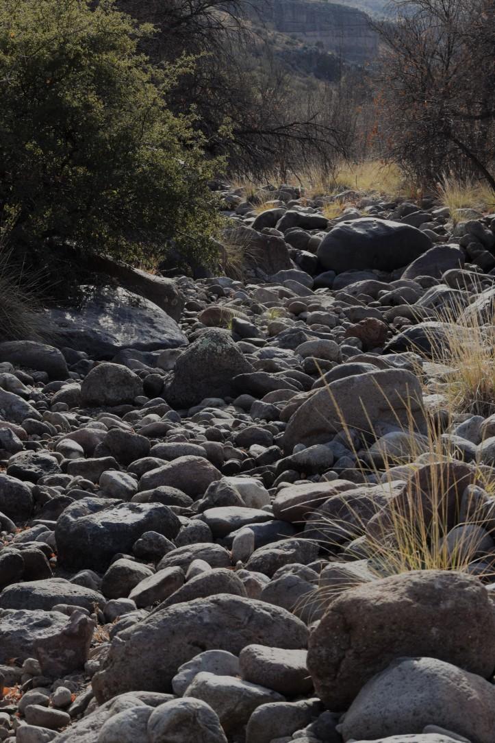 Creek bottom